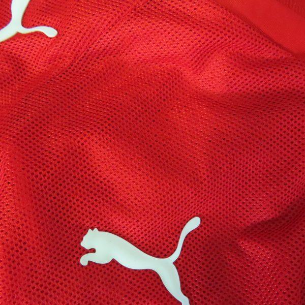 Vintage Austria 2008-09 home shirt Puma soccer jersey size L EURO2008 (4)