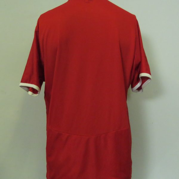 Vintage Austria 2008-09 home shirt Puma soccer jersey size L EURO2008 (7)