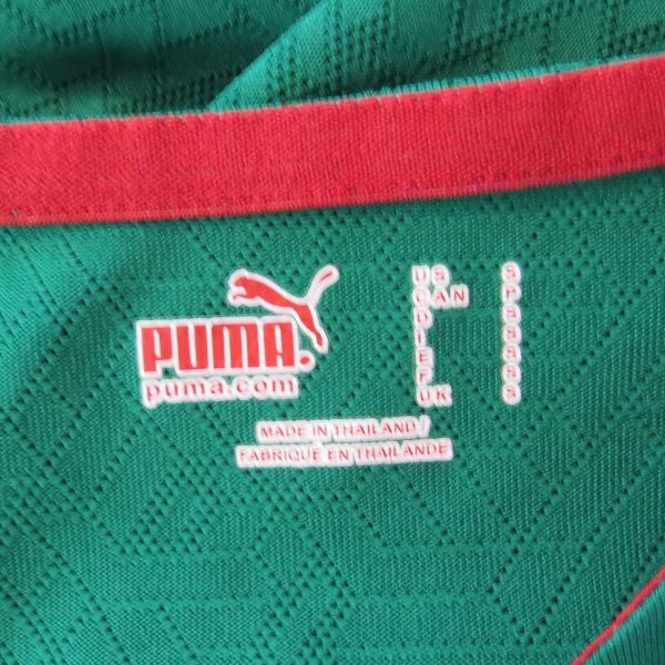 Cameroon 2010-11 home shirt Puma soccer jersey size S World Cup 2010 (3)