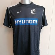Carlton FC AFL Australian Football On-Field team gear jersey t-shirt Nike XL (1)